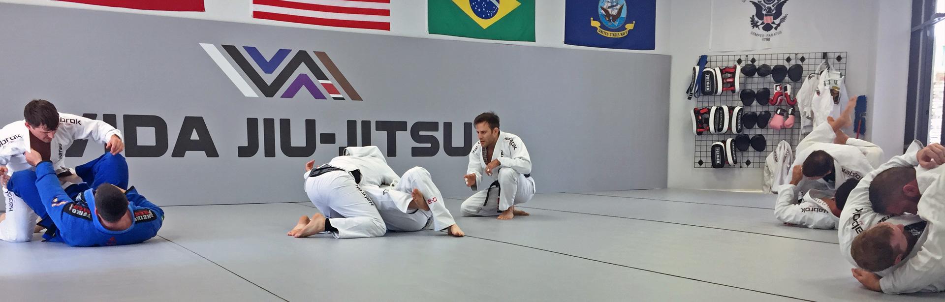 Vida Brazilian Jiu-jitsu Schedule