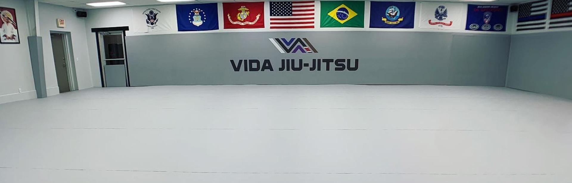 vida-bjj-header-home2